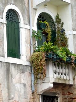 Greenery in Venice