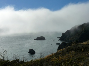 fog on california coast
