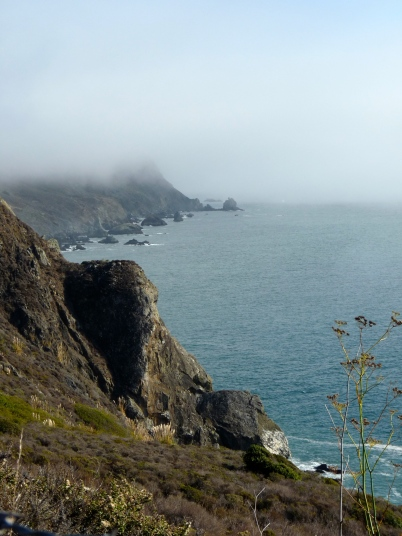 fog on california cliffside