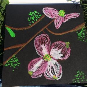 Dogwood Flowers!