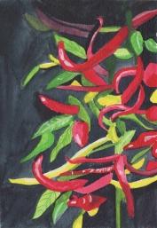 chili peppers dark